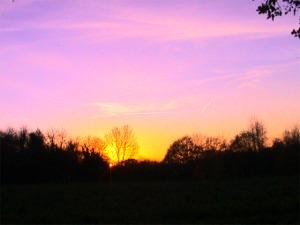 Limpsfield sunset