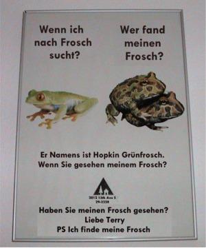 Hopkin Lost frog